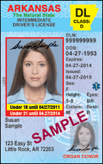 Finance Samples Administration License Of Card Driver's Department And Identification